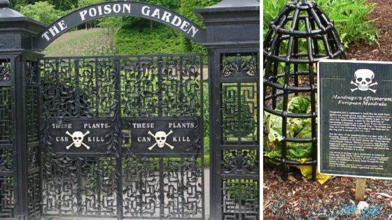Le Poison Garden en Angleterre