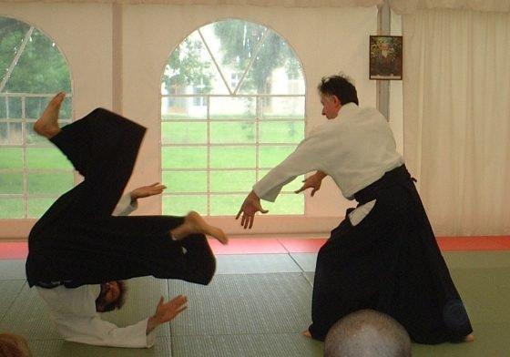 arts martiaux